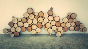 woodslice